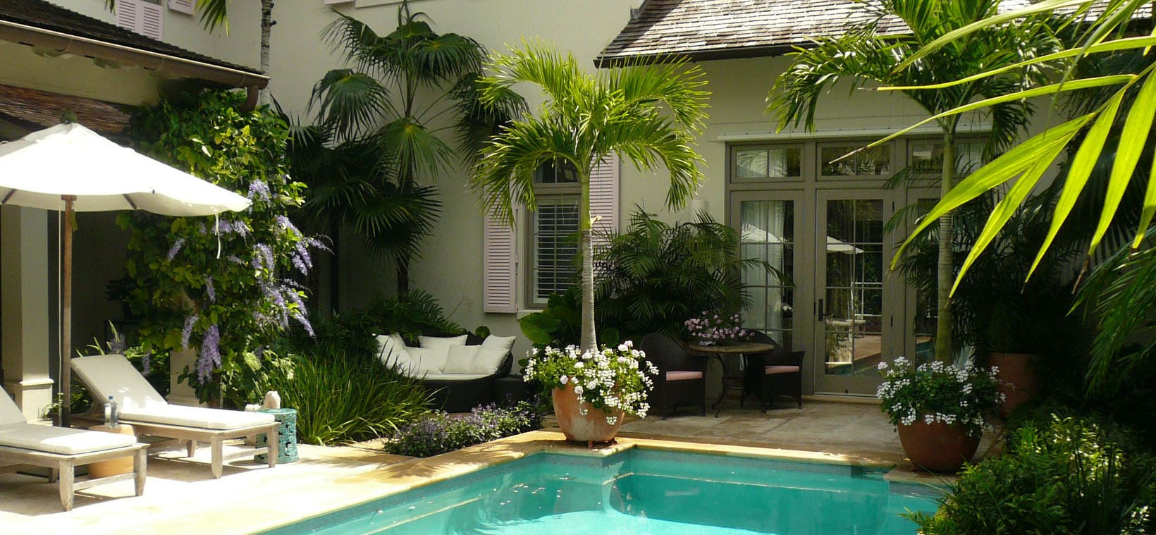 aiello-landscape_container-plants-poolside