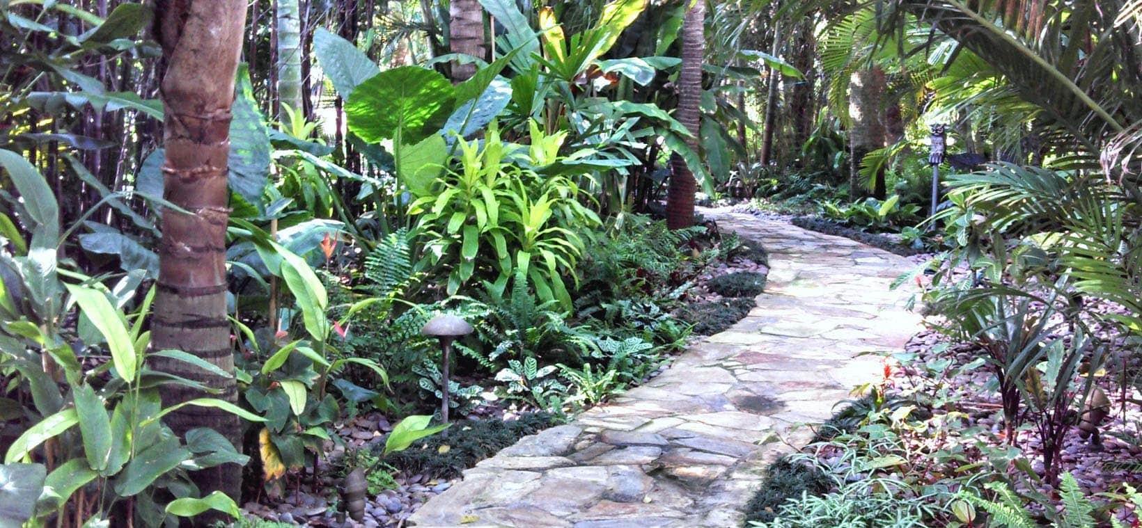 aiello landscape palm beach lush landscaping