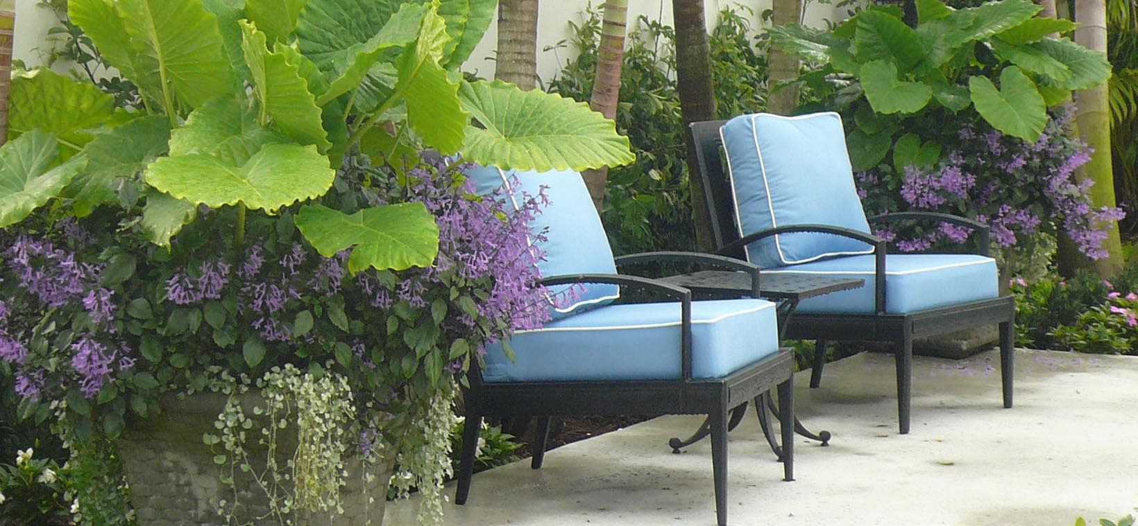 aiello-landscape_potted-plants-poolside