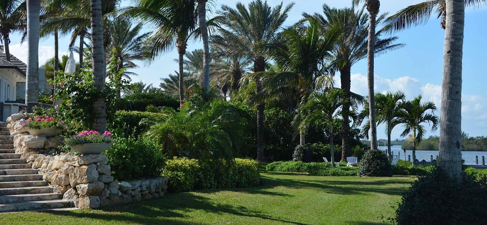 aiello landscape lawn and garden