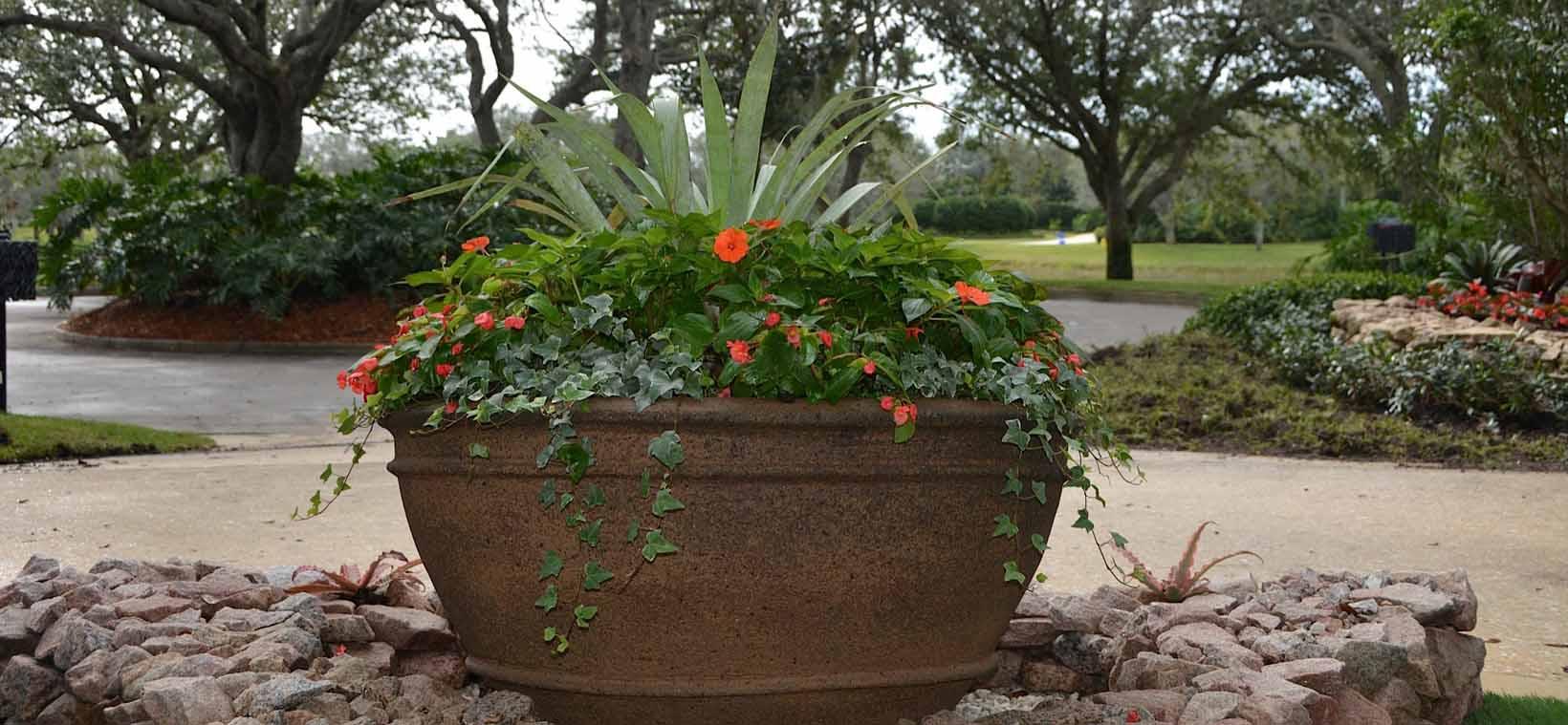aiello-landscape_potted-plants-driveway