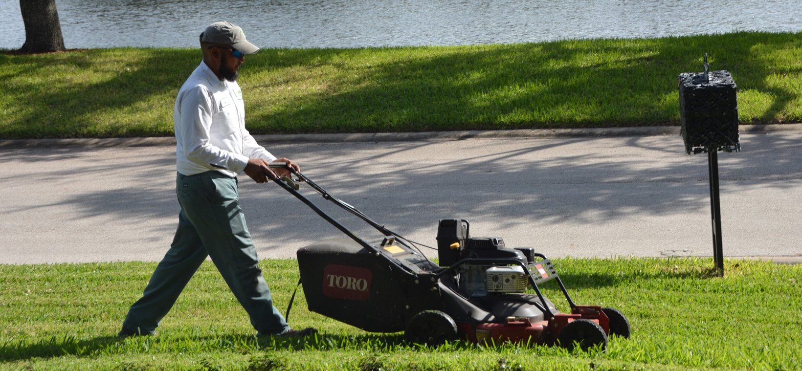 Aiello landscape yard mowing